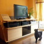 オーディオボードと猫